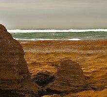 St Andrew's Beach by Rosina  Lamberti