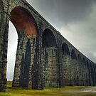 Ribblehead Viaduct, Yorkshire Dales by Steve  Liptrot