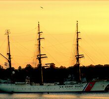 U S Coast Guard by Barbara Gerstner