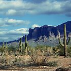 Arizona Landscapes by Dennis Begnoche Jr.