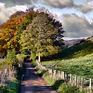 The Road to Delcombe Farm by A90Six