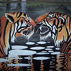 2tigers by hoffmann