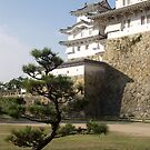 Himejijo Castle (White Heron Castle) Himeji, Japan. by johnrf