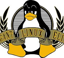 Arrogant Linux Elitist by kendaru