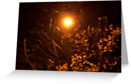 An Autumn`s Night  by Starr1949