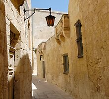The Silent Street of Mdina  by Stanislav Sokolov