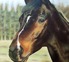 Russian Horse by Nicole Zeug