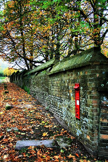 The Manor Wall by Polly x