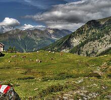 Austria 2 by Manuel Wieczorek