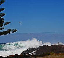 Big Wave by Evita