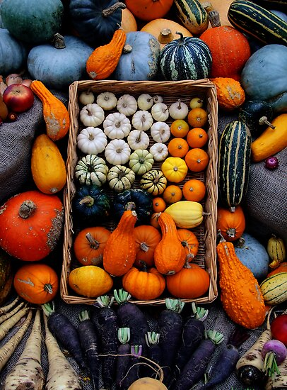 Basket of Harvest Goodness by Mark Wilson