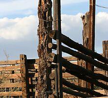 Old Cattle Shoot  by Robert Khan