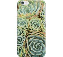 Succulentville iPhone Case/Skin