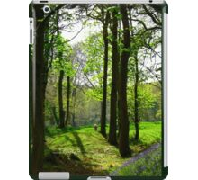 Enchanting Woods - Child's Paradise iPad Case/Skin