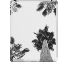 Palm Kaleida iPad Case/Skin