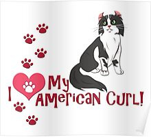 I Love My American Curl! Poster