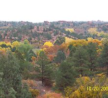 Garden of the Gods, Trees by HungarianGypsy