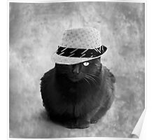 The cat with hat  Poster