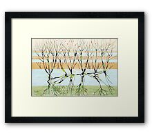 withered trees Framed Print