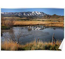 Rustic Utah Poster