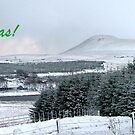 Falkland Hill Xmas Card by Steven McEwan