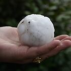 Giant hailstone by jdeguara