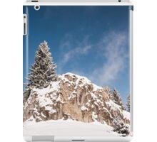 Climber iPad Case/Skin