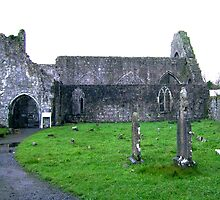 Dominican Priory in Athenry, Ireland by Osbren
