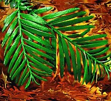 Like Leaves We Touched... by Roger Sampson