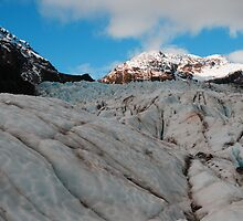 Fox Glacier by chriso