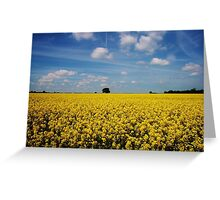 Oxfordshire Fields Greeting Card