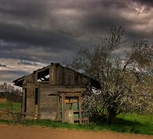 dark clouds by danapace