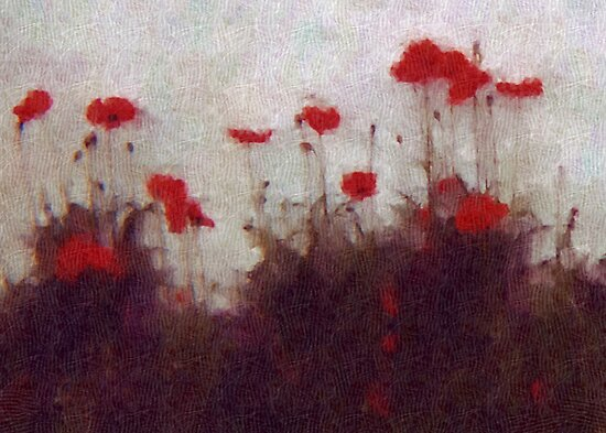 Painted Poppies by Rachel Leigh