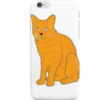 Cool Cat iPhone Case/Skin