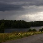 Lakeside in Sweden by Madilation