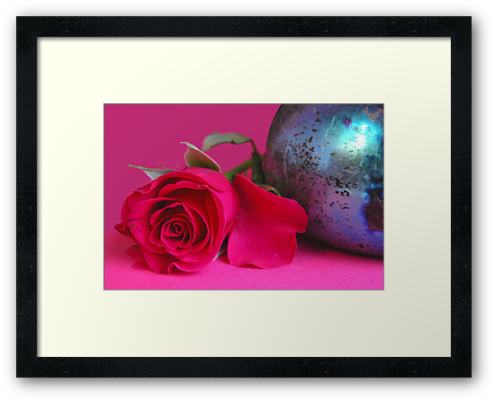A still life with a colorful rose by CanDuCreations