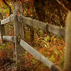 Fall Fence by VLFatum
