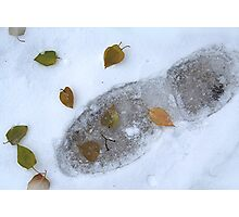 Footprint in the Autumn Snow Photographic Print