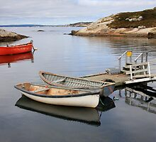 Canoes - Peggy's Cove by Dave Law