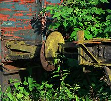 rusty sleepers... by danapace