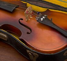 violin in yellow case by David Chesluk
