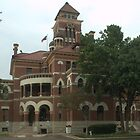 Gonzales Co. Courthouse, Gonzales, Tx. 1894 by John Thomason