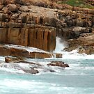Cliffs - Boat Harbour NSW by Bev Woodman