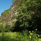 The Nockamixon Cliffs, Bucks County PA by Anna Lisa Yoder