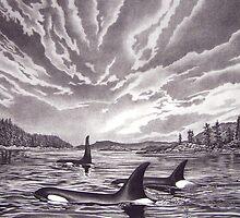 Breaking The Silence - Orca by John Houle