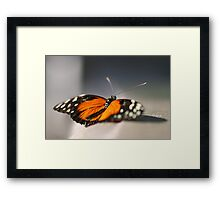 offering Framed Print