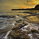 Kimmeridge Bay by AntonyB