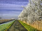 WINTERS ROAD IN THE NETHERLANDS by Johan  Nijenhuis