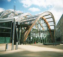 A Sunny Day At Winter Gardens by Nathan Walker