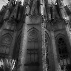 La Sagrada Familia by Hollie Nass